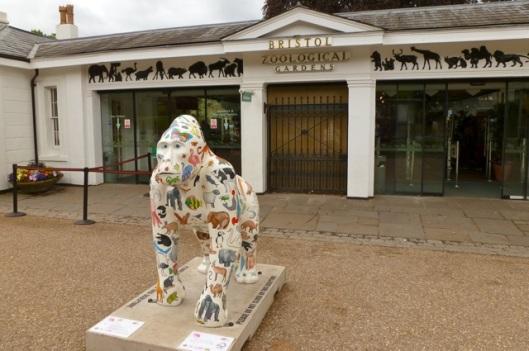 Noah Gorilla Bristol Zoo