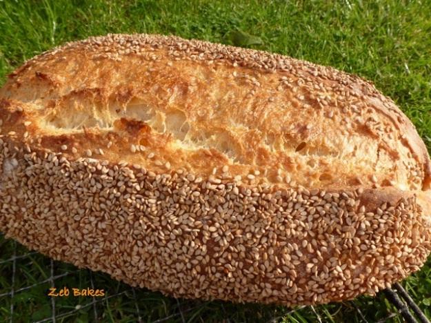 Hamelman Semolina Bread