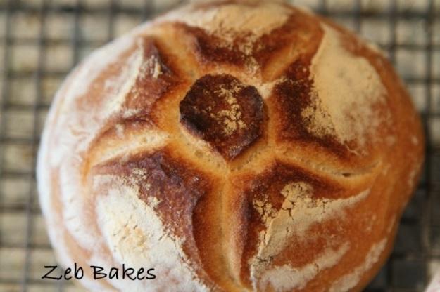 Rosette, Michette, Biga, Baking, Italian