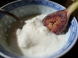 Breakfast of fresh figs and yoghurt