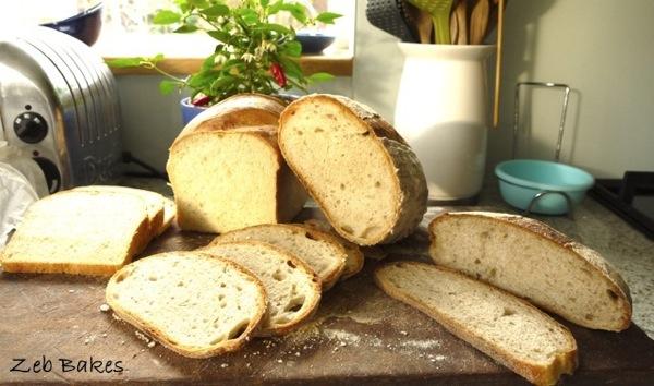 crumb shots, home made bread
