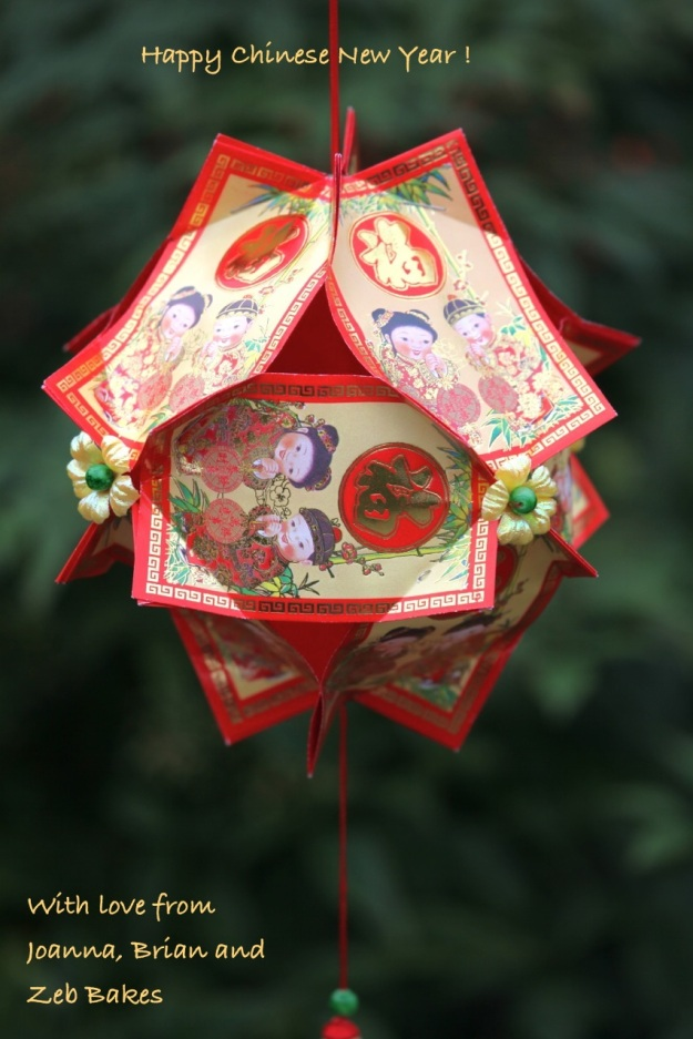 Chinese Lantern from a tutorial at Figjamandlimecordial.com
