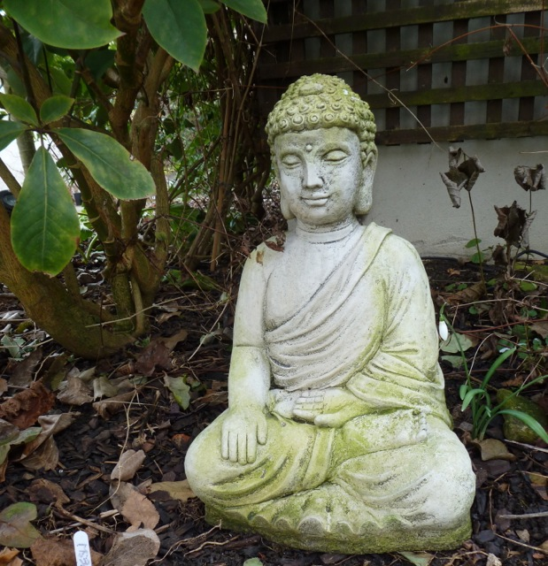 Buddha with snowdrops