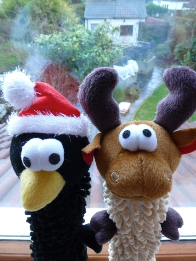 Dog Toys for Christmas 2012