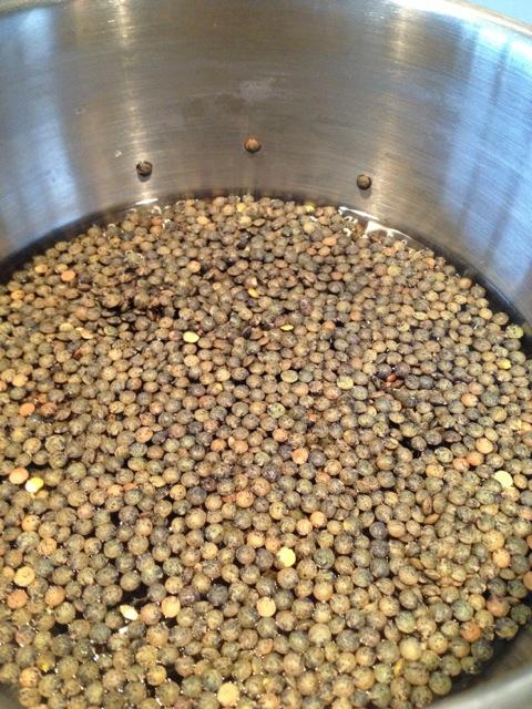 Uncooked Le Puy Lentils