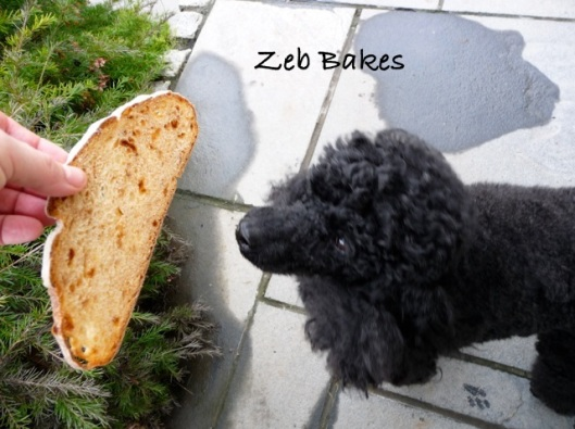 Zeb Bakes Apple Bread