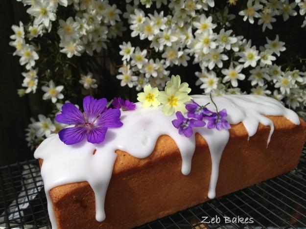 Madeira Cake Pam Corbin Cakes