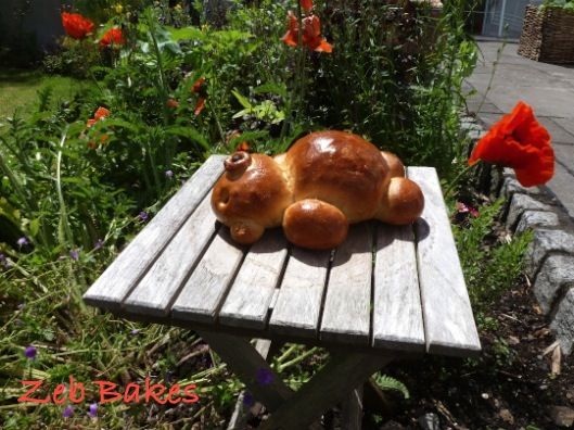 Sunbathing Bread Bear