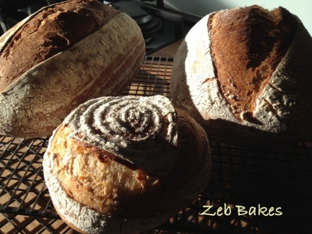 Bread in Morning Light