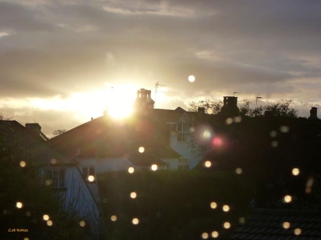 Suburban English Solstice