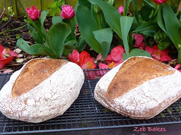how to make spelt bread in a bread maker
